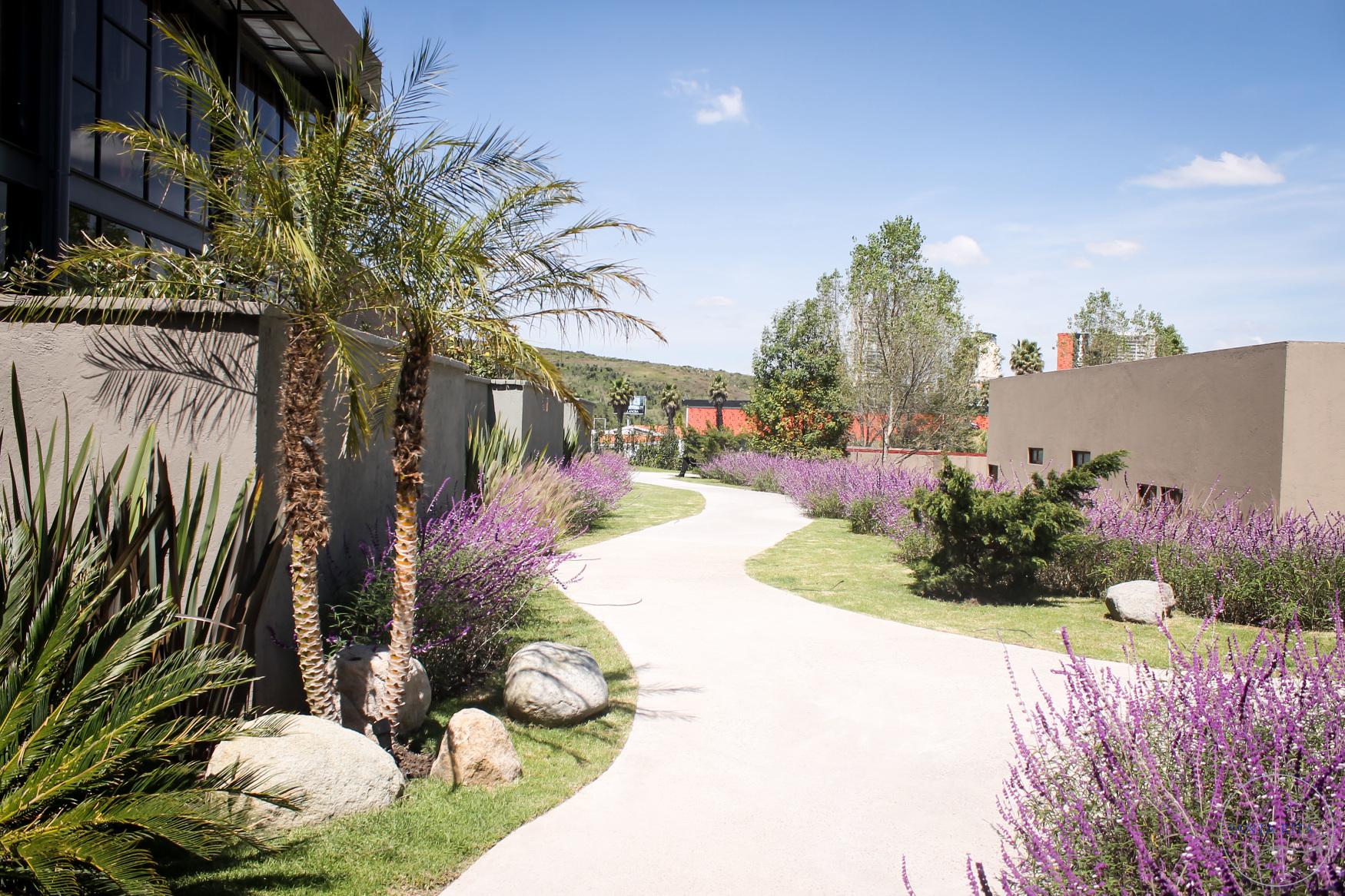Jard n santa rita cuaik arquitectos for Telefono casa jardin